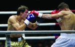 Cómo elegir tus guantes de boxeo