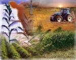 La importancia de la Tecnología de Alimentos en el desarrollo productivo de Argentina