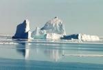 Especies del Ártico bajo amenaza