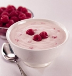 Proceso de fabricación del Yogurt