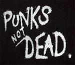 Top 5: Punk Songs