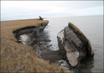 Las Causas de la Erosión