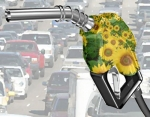 ¿Cómo convertir un motor diesel en biodiesel?