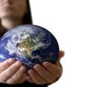 Conceptos esenciales sobre Ecología