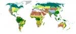 La Variedad de Biomas en el Mundo