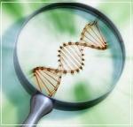 Todo sobre la Biotecnología