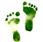 Consejos para reducir mi huella ecológica