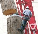 Los 10 Trabajos mas peligrosos del mundo