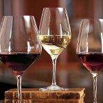 ¿Cuáles son los diferentes tipos de vinos?