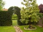 Diseños para tu jardín