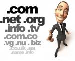 Definición e importancia de los dominios y subdominios de internet