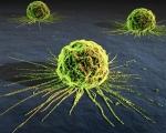 ¿Cuántos tipos de cáncer existen?