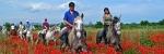 Equinoterapia ó terapia con caballos