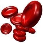 ¿Qué es la anemia autoinmune?