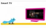 MeeGo Smart TV Working Group