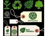 Comprar ropa interior ecológica