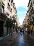 Un Paseo a través de los Barrios de Madrid
