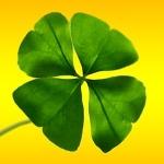Tres maneras probadas de atraer la buena suerte