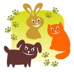 Constelaciones de mascotas. Terapia para animales de compañía