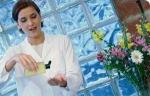 Aromaterapia, alternativa natural en la menopausia