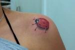 Los tatuajes de vaquitas de san antonio o mariquitas