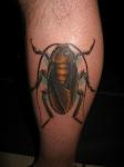 Pequeños insectos para un tatuaje