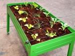 Mesas de cultivo, la opción más práctica para cultivar en casa