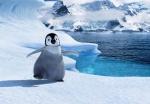 La región de la Antártida