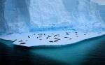 La Gravedad del Cambio Climático
