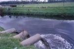 Evitemos la contaminación del agua