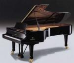 El Piano un instrumento de virtuosos