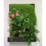 Diseña y construye tu propio jardín vertical