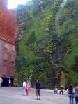 Edificios ecológicos: jardines verticales
