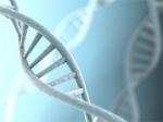 Descifrando el ADN del papá: avances genéticos han mejorado las pruebas de paternidad