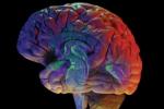 La diabetes y la depresión: El impacto de esta enfermedad extendida  al cerebro a menudo se pasa por alto