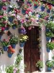 Patrimonio intangible de la humanidad, Los patios de Córdoba