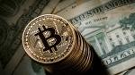 El boom del bitcoin tiene su correlato en el negocio de los dominios