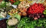 Seguridad y Soberanía Alimentaria en México