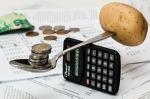 ¿Cuáles son los tipos de ingresos básicos?