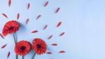 Cómo superar el pasado y perdonarse a uno mismo los errores liberando tu culpa