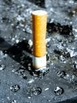 Efectos del tabaquismo sobre el Síndrome del Intestino Irritable
